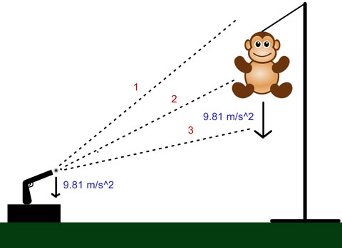 If the monkey starts falling right as the bullet leaves the gun, where should the hunter aim? Above, below, or straight on?
