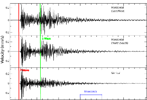 A seismogram displaying P and S waveforms