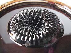 Ferrofluid spikes above pole of ring ceramic magnet (photo courtesy of ForceField)