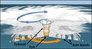 Wind spiraling in towards the eyewall of the hurricane. The conservation of angular momentum requires that the wind speed increase as the wind's distance from the center of the storm decreases. Also, note how the air spirals upward in the eyewall. (image courtesy of NOAA)