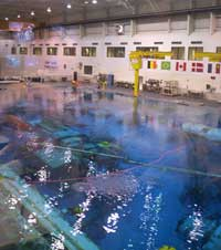 The pool at NBL