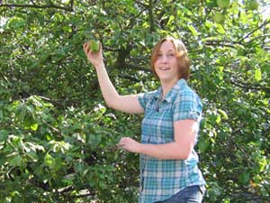 Kelly Picking apples from Newton's Apple Tree in the courtyard of the Physics building in York, UK