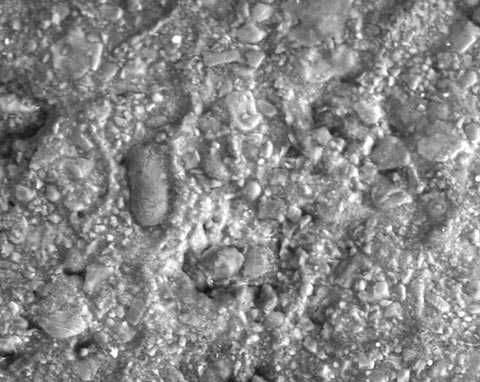 SEM image of chocolate