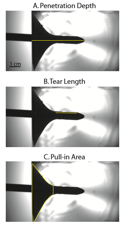A series of frames detailing the different measures of damage, such as tear length and penetration depth.